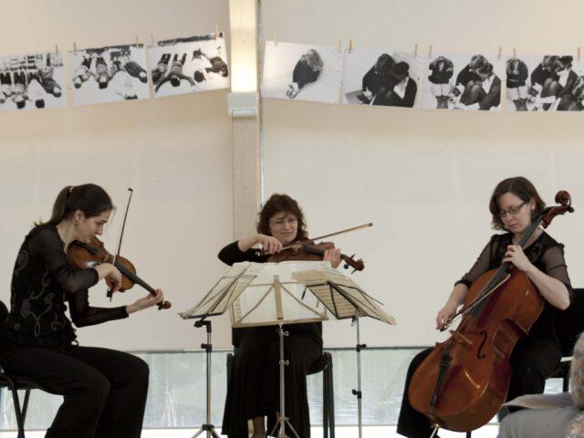 Concertserie Muziek in Beeld